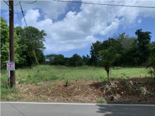 Terreno,Carr, 307, Guaniquilla, Cabo Rojo