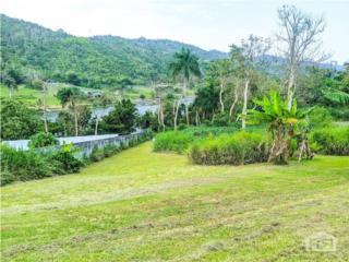 Urb. Riberas del Lago, Caguas