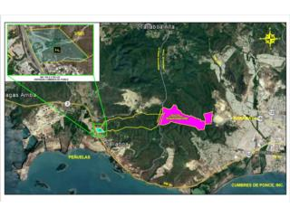 Industrial Land 1,064 Acres, Ponce