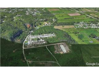 Bo. Higuillar Arecibo, Proyecto de 132 unid.