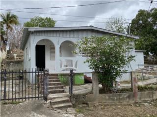 Barrio Palmarejo en Coamo 1050mc