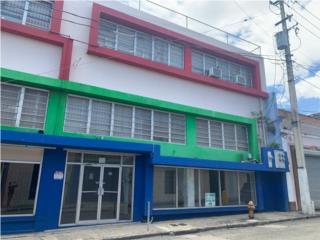 Edificio en Calle Luis Muñoz Rivera