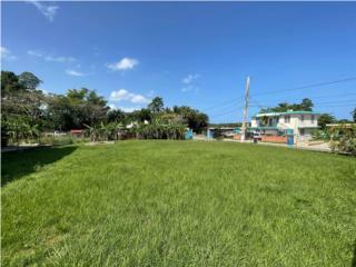 Escpectacular solar de esquina en Cabo Rojo!