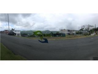 Solares ubicados en Cedro Abajo, Naranjito