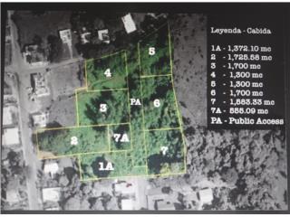 OPCIONADO Bo Jobos Isabela - Undeveloped Lot #2