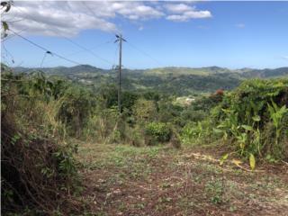 864 mc TOPE DE LOMA, SEMILLANO, VISTA PANORAMICA