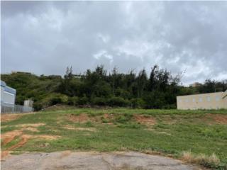 Carretera Numero 2 (Lado del Fondo, Arecibo)