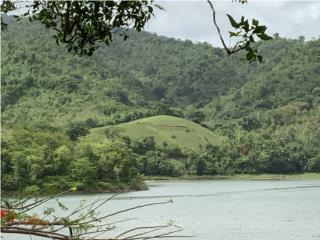 Bo. Jagual, Patillas (Lago Patillas) ESPECTACULAR