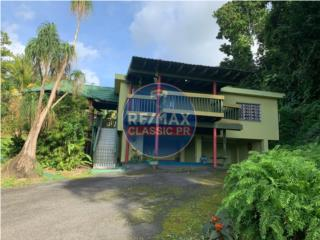 Tropical Paradise in Sunset Hills! REDUCED PRICE