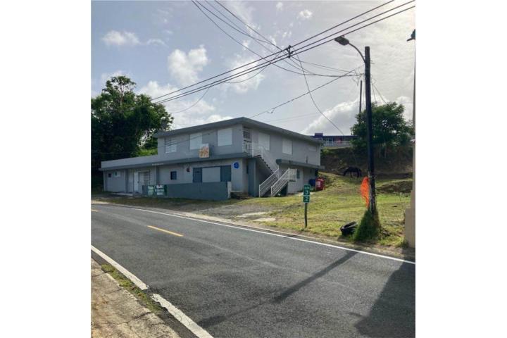 Caimito Alto Puerto Rico