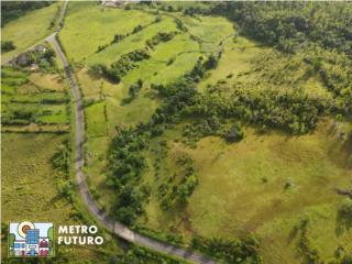 ¡Gran Finca en Ceiba con Vista a la Costa Norte!