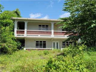 BarrioPalmarPR 443 KM 5.1 Interior 2 unidad