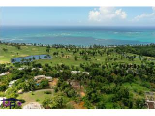 Land Lot For Sale at the Ritz Carlton Reserve