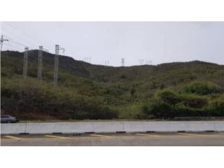 Finca agrícola 235 cdas adyacente autopista