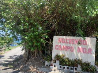OPCIONADA Hacienda Campomar 1099 mc vista al mar!!