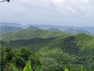 Con vista a las montañas y Bahia de Guanica