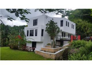 Villa de Luquillo cerca de Hacienda Carabali