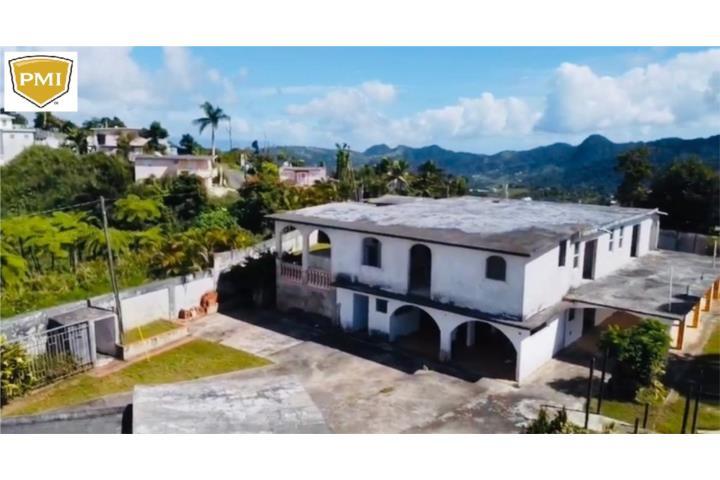 Guavate Puerto Rico