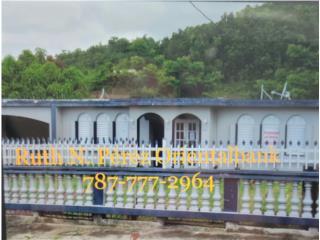 ORIENTAL BANK Bo. Celada Rd 181 Gurabo $122,000
