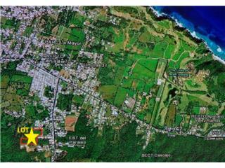 Terreno en Isabela de 8 cuerdas