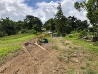 Finca ubicada en Bo. Quebrada Cruz, Toa Alta