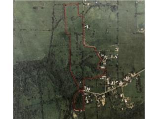 Jobos Isabela Land 28.9 Acres