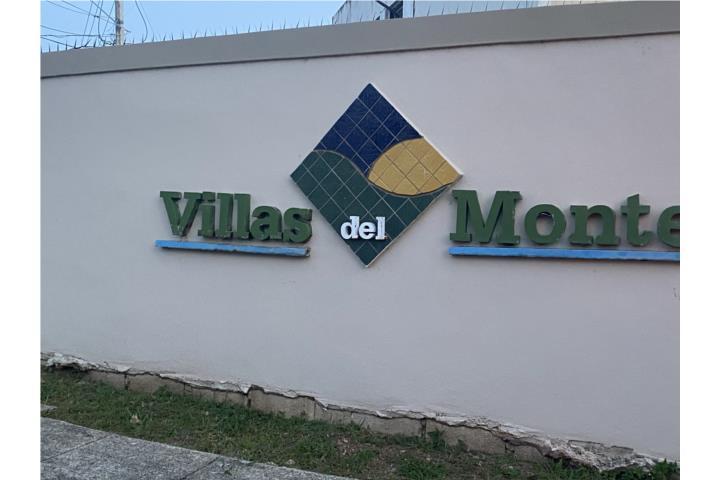 Villas Del Monte Puerto Rico