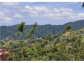 Loma del Viento , Caguas