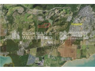 Terreno agrícola de 48.64 Acres en Guayama