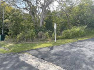 Terreno/Lot in Roble Valley, PDM (2,196 p/c)