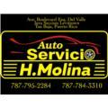 Auto Servicio H.Molina