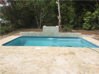 Professional Pool Designers the ease of maintenance and summer color brings the homeowners to ease to enjoy the pool and keep the poolscape manicured without much effort Professional Pool Designers La Autoridad Puerto Rico