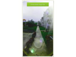 Paisajes Borínquen Landscaping Inc.  - Mantenimiento Puerto Rico