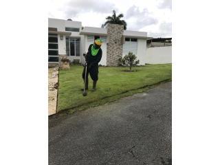 Mother Earth Landscaping - Construccion Puerto Rico