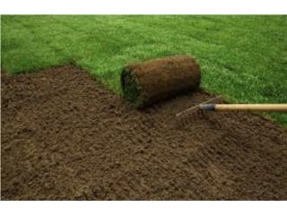 Amorales Landscaping - Instalacion Puerto Rico