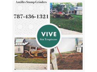 ANTILLES STUMP GRINDERS - Orientacion Puerto Rico