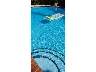 Blue Diver Pool Services - Mantenimiento Puerto Rico