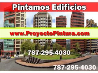 PROFESSIONAL PAINTING SOLUTION - Construccion Puerto Rico