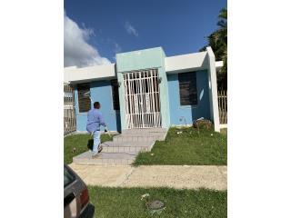 J.D. Jardinería & Servicios - Construccion Puerto Rico