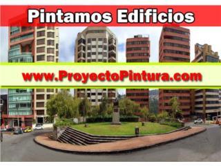 PROFESSIONAL PAINTING SOLUTION - Reparacion Puerto Rico