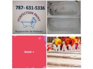 Perfection Paint - Reparacion Puerto Rico