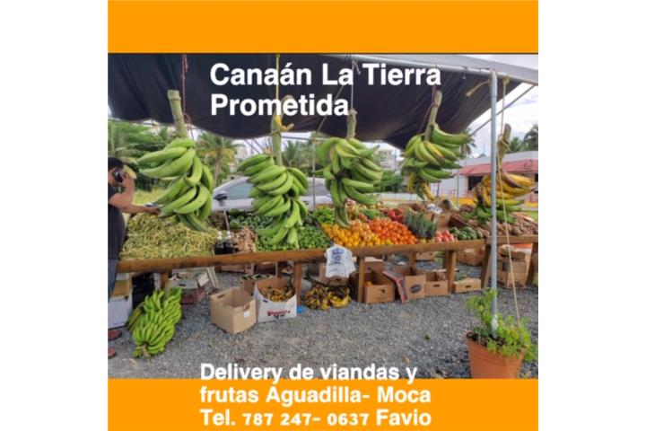 CANAAN . Supermarkets, Aguadilla