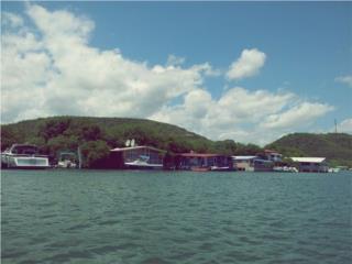 Casa Flotante en la Parguera Puerto Rico