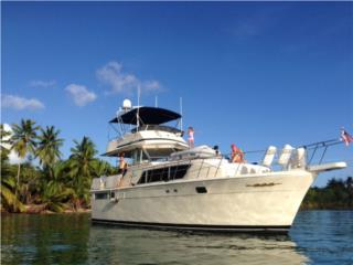 Chris Craft, CHRIS CRAFT 41   remodelada completa en 2004  1987, Sea Fox Puerto Rico