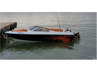 Wellcraft 17 Navegando al dia $5900 Puerto Rico