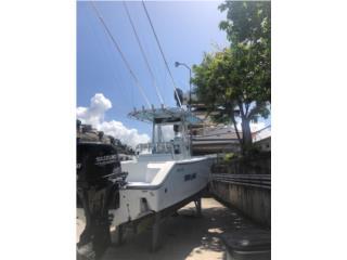 SeaCraft, Seacraft 25 2001 2001, Botes Puerto Rico
