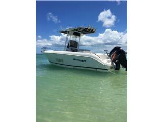 Wellcraf fisherman 21.5 Puerto Rico