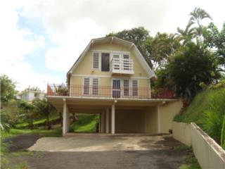 Bo Buena Vista Bayamon,Casa de Campo Bajo Tasacion, Bayam�n Real Estate Puerto Rico