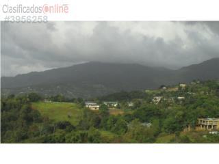 Finca 6 cuerdas palma sola, Canovanas Bienes Raices Puerto Rico