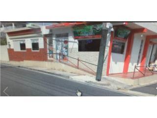 FINANCIAMIENTO POR EL DUE�O, San Lorenzo Real Estate Puerto Rico